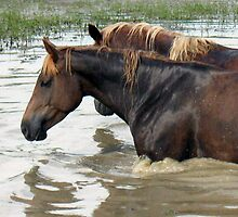 "Horses with Attitude no. 7 ""Race Ya Across the Pond, Joe. Loser Buys a Round!"" by © Bob Hall"