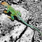 Trippiguana by ShotByAWolf