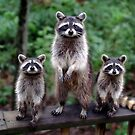 """""""Family Portrait"""" by Melinda Stewart Page"""