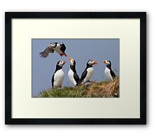 Just For Fun! Framed Print