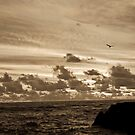 Sepia sunset by yurix