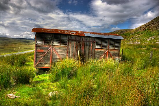 Abandoned Wagon #2 by Trevor Kersley