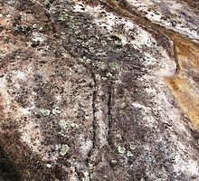 Aboriginal Emu Rock carving   by largo