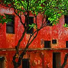 Fort Jesus - Mombasa by Brendan Buckley