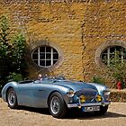 Austin Healey 100 M BN2 by Uwe Rothuysen