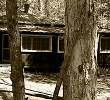Elkmont by Gary L   Suddath