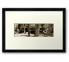 Elkmont Framed Print