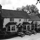 The George and Dragon by Asenna