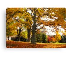 Autumn Afternoon Canvas Print