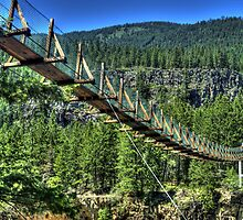 Swinging Bridge at Kootenai Falls by Terence Russell