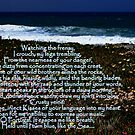 Watching the Frenzy-Cabo Raso, Portugal by Wayne Cook