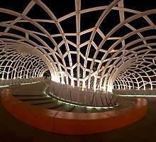 Webb Bridge by Travis Easton