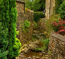 Village Stream - Dent. by Trevor Kersley