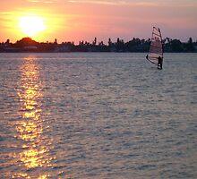 Windsurfer by Ginny Schmidt