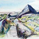 Down Tor Granite by Richard Sunderland