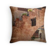 Primitive Arts, Tucson, Arizona Throw Pillow
