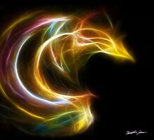 Curves 1 - Fractal Flame by Christopher Johnson