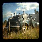 VW1 TTV by ozzzywoman
