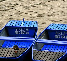 Blue Boats on the Vltava River by Segalili