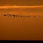 Sunset at Texel by Minne