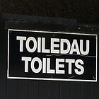Welsh Toilet Sign by LumixFZ28