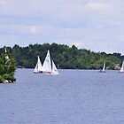 Sailing at Bell Park by Janet Young