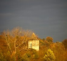 Tower in the Distance by Gary Rayner