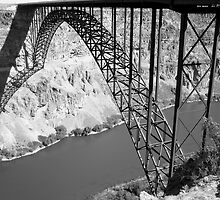Perrine Bridge over the Snake river . by Borror