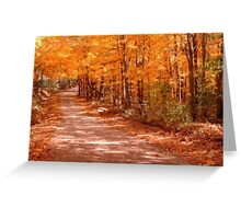 Orange Country Road Greeting Card