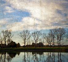 Dawn trees by Mel Brackstone