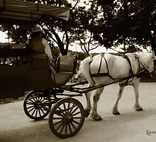 Going Home by RC deWinter