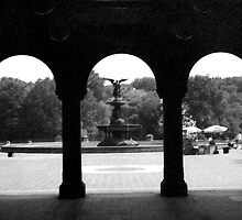 THE FOUNTAIN IN CENTRAL PARK by Paul Quixote Alleyne
