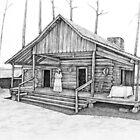 Wells Log Home by nancyzurenda