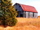 ~Arkansas Barn~ by NatureGreeting Cards ©ccwri