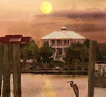 Evening Glow / South Carolina  / by Shelley  Stockton Wynn