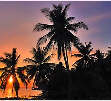 Tropical Sunset by Adri  Padmos