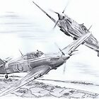 Hurricane &Spitfire. by kwin