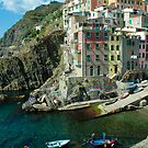 Cinque Terre - Riomaggiore, Italy by Bob  Perkoski