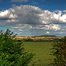 West Lothian Countryside by Tom Gomez