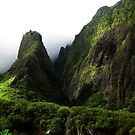 Iao Needle by Daniel OBrien