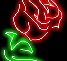 Rose  by annaburham