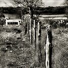 Down The Fence Line  2   ( BoneYard Series ) by Carla Jensen