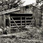 Rusty Barn   2   ( BoneYard Series ) by Carla Jensen
