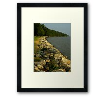 The River Bank ~ Part One : Perspective Framed Print