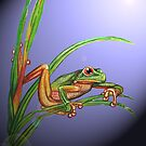 Green Frog by MelodyMoss