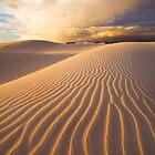 Desert Storm by Hougaard Malan