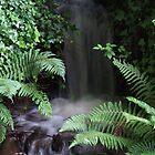 Minature flowing Waterfall by Darron Palmer