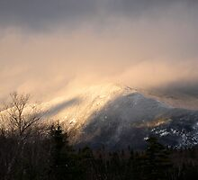 White Mountain Morning by Michelle Jarvie