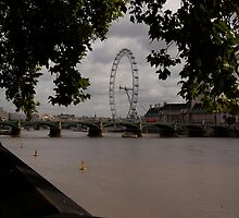 London Eye by Mleahy