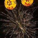 lantern pop by Ryan Bird